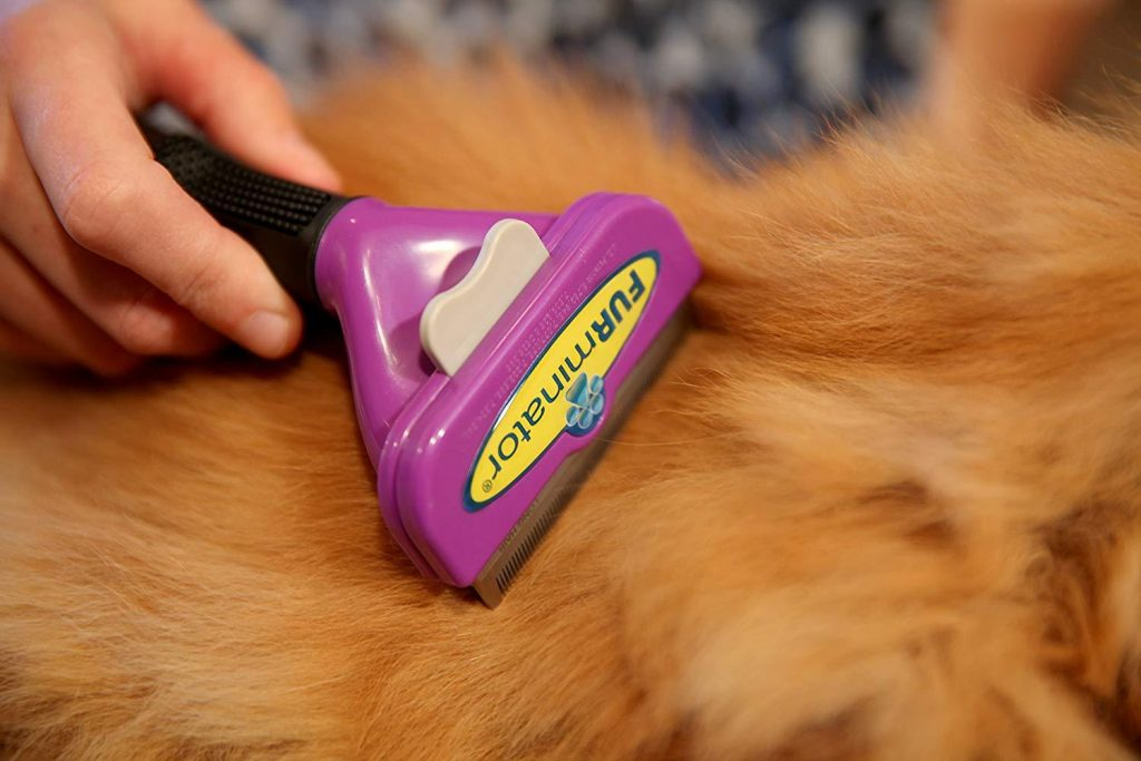furminator cepillo gatos